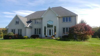 Swansea Single Family Home For Sale: 1003 Sharps Lot Road