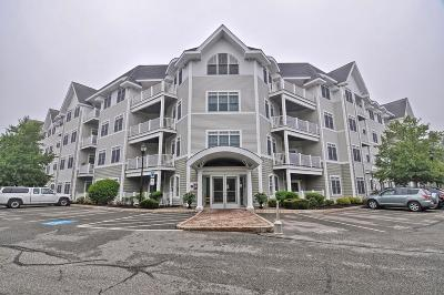 Braintree Condo/Townhouse New: 614 Pond St #2406