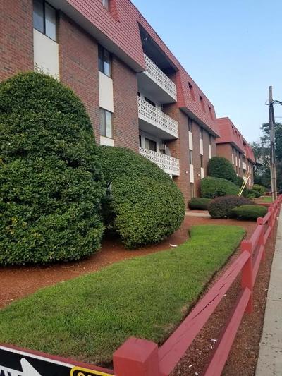 Malden Condo/Townhouse New: 141 Pierce St #18