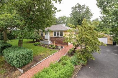 Dedham Single Family Home New: 36 Gainsville Rd