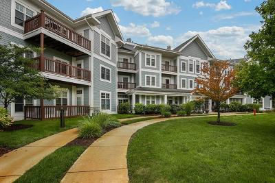 Braintree Condo/Townhouse New: 501 Commerce Dr #4-203