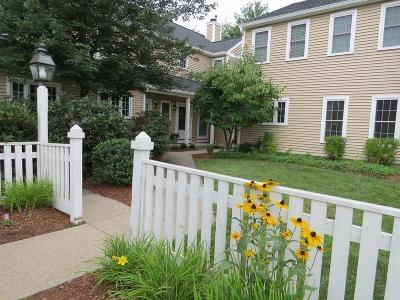 Braintree Condo/Townhouse New: 307 Tilden Commons Ln #307