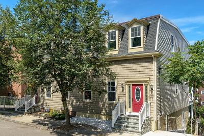 Somerville Single Family Home New: 125 Heath Street