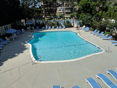 Watertown Condo/Townhouse New: 151 Coolidge Ave #510
