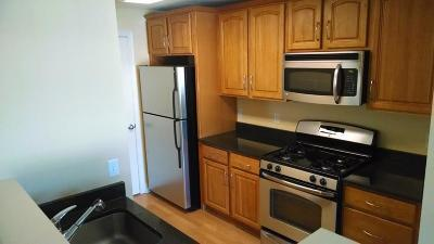 Stoughton Condo/Townhouse Under Agreement: 545 Page St #301