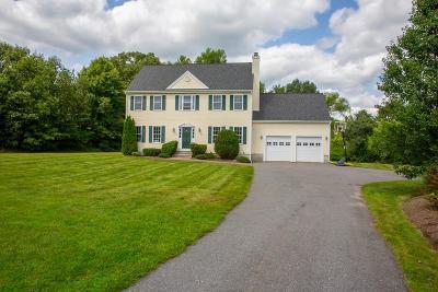 Hudson Single Family Home For Sale: 4 Elaine Cir