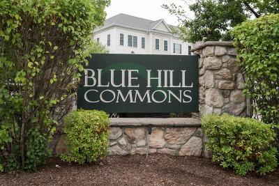 Canton Condo/Townhouse Under Agreement: 1308 Davenport Ave #1308