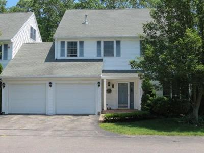 Braintree Condo/Townhouse For Sale: 1215 Matthew Woods Dr #1215