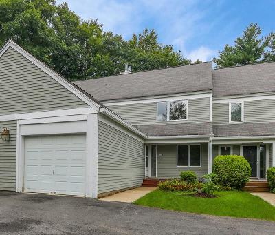 Franklin Condo/Townhouse For Sale: 29 Stone Ridge Rd #29