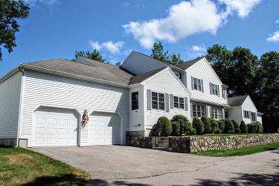 Franklin Condo/Townhouse For Sale: 84 Chestnut Ridge Cir #84