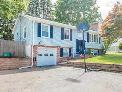 Waltham Single Family Home Contingent: 62 Beaver Street