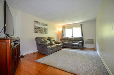 Framingham Condo/Townhouse For Sale: 25 Willis St #29