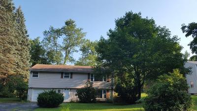 Westborough Single Family Home For Sale: 57 Eli Whitney Street