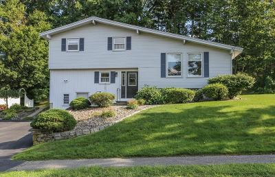 Hudson Single Family Home Contingent: 98 Fort Meadow Dr