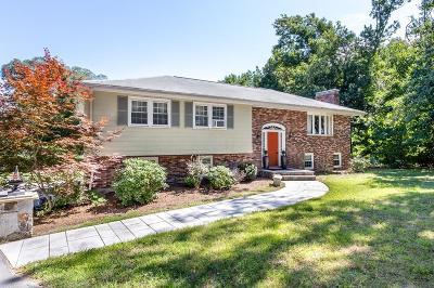 Dedham Single Family Home For Sale: 201 Common St