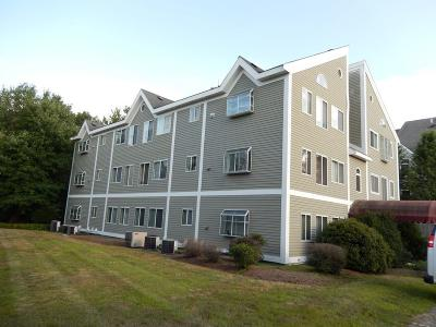 Weymouth Condo/Townhouse Under Agreement: 10 Donald St #11