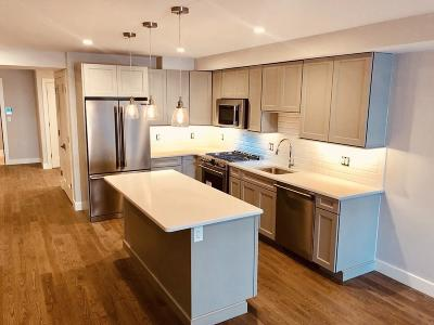 Braintree Condo/Townhouse For Sale: 9 Independence Ave #104
