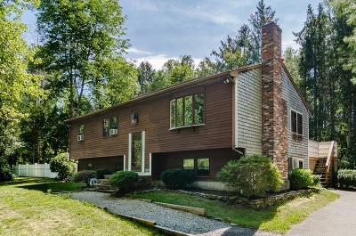 Kingston Single Family Home For Sale: 200 Elm St