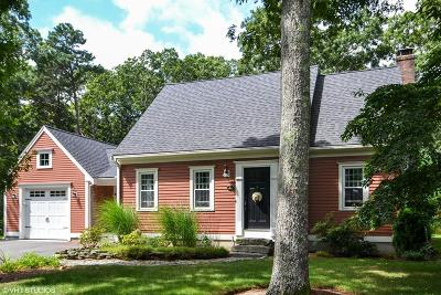 Sandwich Single Family Home For Sale: 21 Westerly Dr
