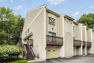 Hudson Condo/Townhouse Contingent: 135 Broad St #2A4