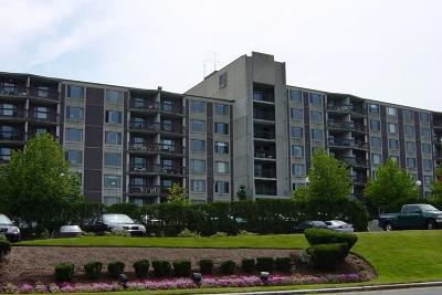 Framingham Condo/Townhouse For Sale: 1500 Worcester Rd #327