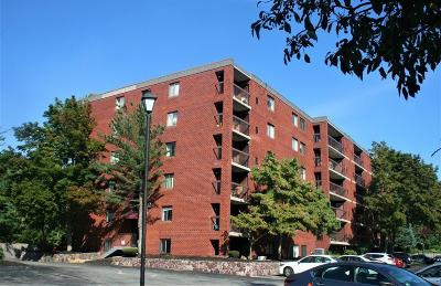 Stoneham Condo/Townhouse For Sale: 159 Main Street #1A