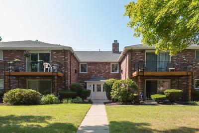 Weymouth Condo/Townhouse Contingent: 37 Fountain Ln #12