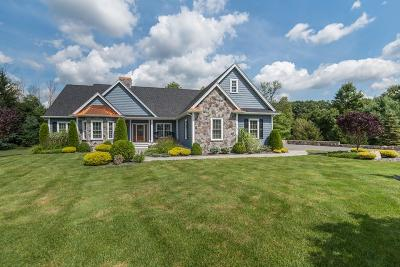 Tewksbury Single Family Home Contingent: 20 Blue Spruce Lane