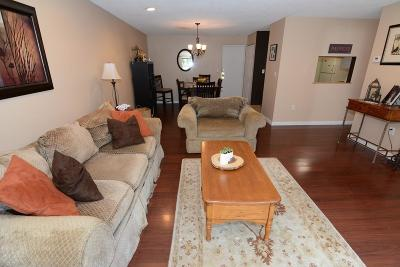 Reading Condo/Townhouse Under Agreement: 2 Summit Dr #18