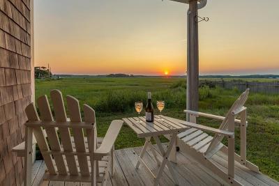 Duxbury Single Family Home For Sale: 234 Gurnet Rd