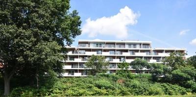 Watertown Condo/Townhouse Under Agreement: 227-229 Coolidge Avenue #212