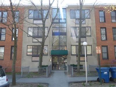 Brookline Rental For Rent: 38 Juniper St #109