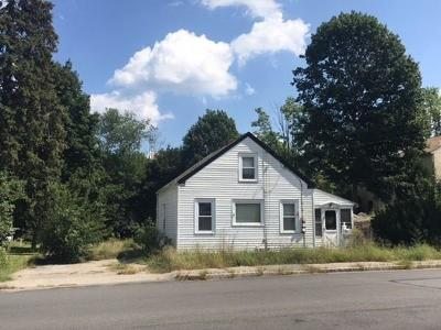 Canton Single Family Home For Sale: 193 Neponset St