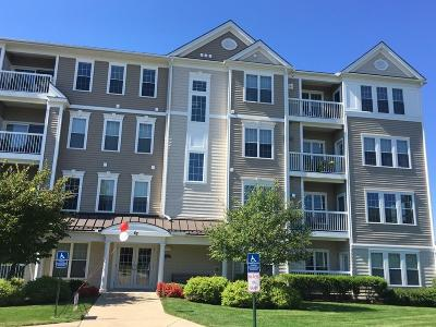 Waltham Condo/Townhouse For Sale: 87 Clocktower Dr #204