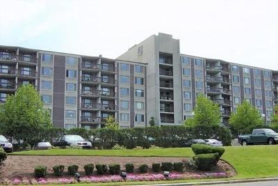 Framingham Condo/Townhouse For Sale: 1500 Worcester Road #711