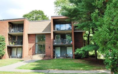 Weymouth Condo/Townhouse For Sale: 263 Lake St #6