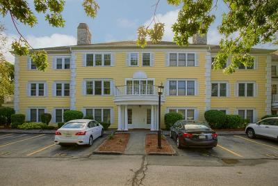 Methuen Condo/Townhouse For Sale: 1 Riverview Blvd #1-102