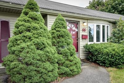 Framingham Single Family Home New: 66 Brookfield Circle
