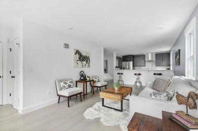 Somerville Condo/Townhouse New: 46 Boston Avenue #1