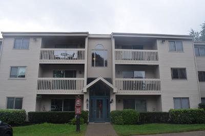 Quincy Condo/Townhouse New: 20 Turning Mill Ln #7