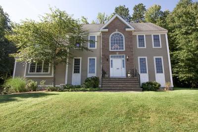 Shrewsbury Single Family Home For Sale: 126 Walnut Street