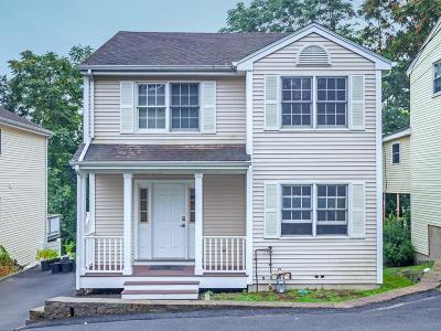 Waltham Single Family Home New: 28 Blossom Street