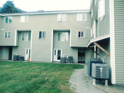 Lowell Condo/Townhouse New: 1036 Middlesex St #8