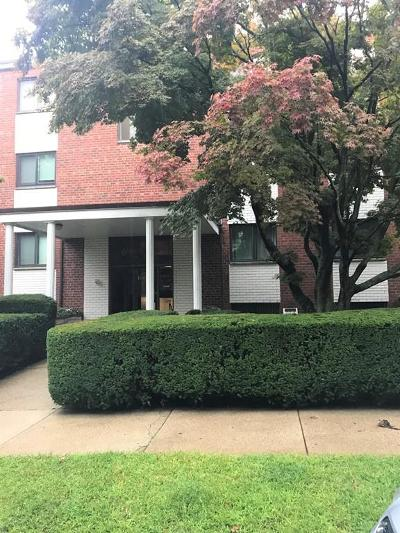 Quincy Condo/Townhouse New: 100 Grandview Ave #2a