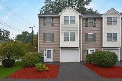 Lowell Condo/Townhouse New: 1255 Middlesex St #F