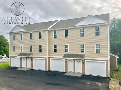 Weymouth Condo/Townhouse Under Agreement: 189 Lake Street #5