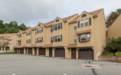 Methuen, Lowell, Haverhill Condo/Townhouse New: 171 Morgan Dr #171