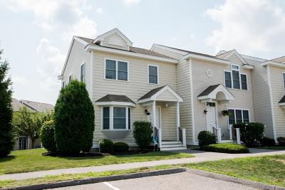 Canton Condo/Townhouse New: 43 Turtle Brook Rd #43
