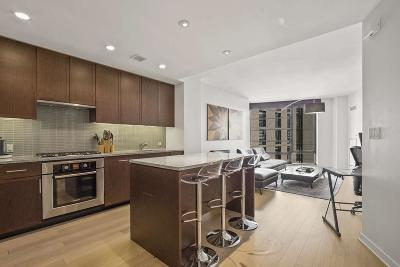Boston Condo/Townhouse New: 580 Washington St #14E