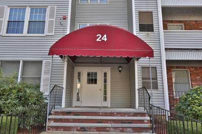 Medford Condo/Townhouse Under Agreement: 24 South St #4